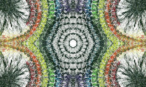 Divine Love Mixed Media - Cymatics Geometry #1548 by Rainbow Artist Orlando L