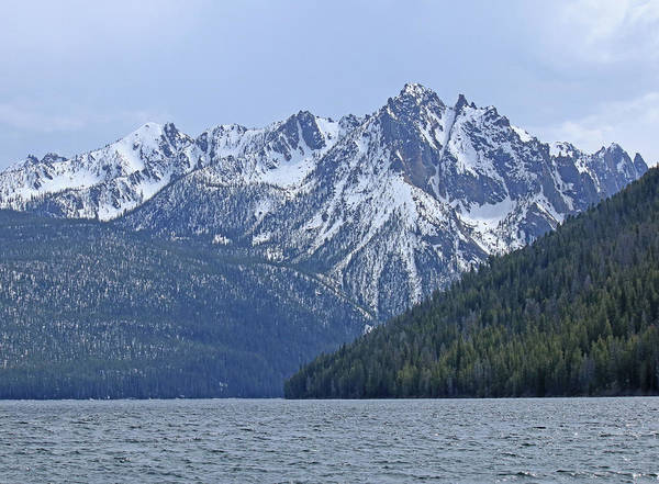 Photograph - D07331 Sawtooth Peaks Rise Above Redfish Lake by Ed Cooper Photography