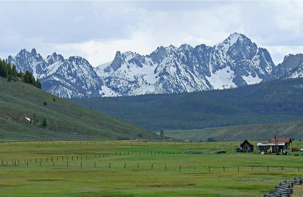 Photograph - D07335-e Sawtooths Above Stanley Basin by Ed Cooper Photography