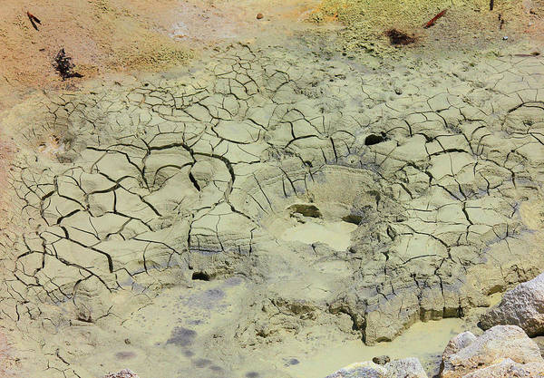 Photograph - D09147 Dried Mud Cracks by Ed Cooper Photography