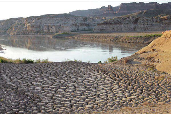 Photograph - D12813 Cracked Mud Flats Of Drying Lake Powell by Ed Cooper Photography