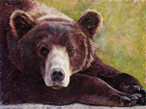 Colorado Wildlife Wall Art - Painting - Da Bear by Billie Colson
