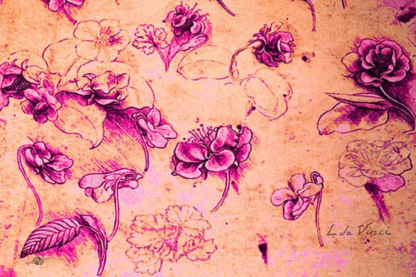 Painting - Da Vinci Flower Study Pink And Orange By Da Vinci by Tony Rubino
