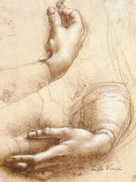 Painting - Da Vinci Study Of Hands by Tony Rubino