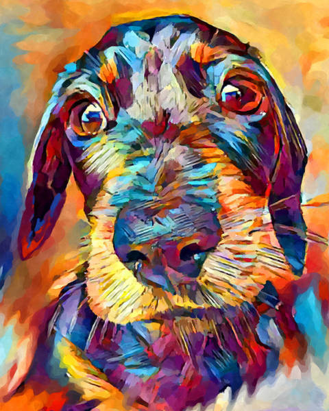 Wall Art - Painting - Dachshund 2 by Chris Butler