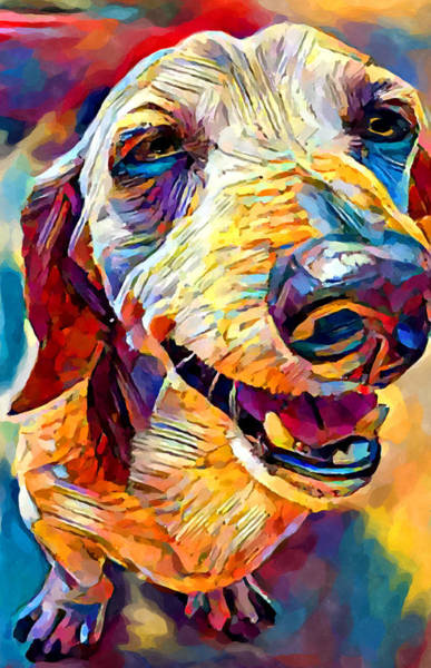 Wall Art - Painting - Dachshund 3 by Chris Butler