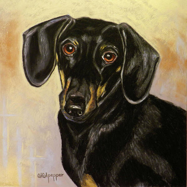 Tan Cat Wall Art - Pastel - Dachshund by Cat Culpepper