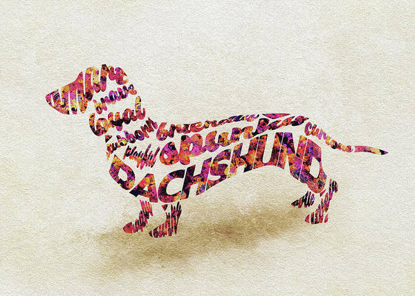 Painting - Dachshund / Sausage Dog Watercolor Painting / Typographic Art by Inspirowl Design