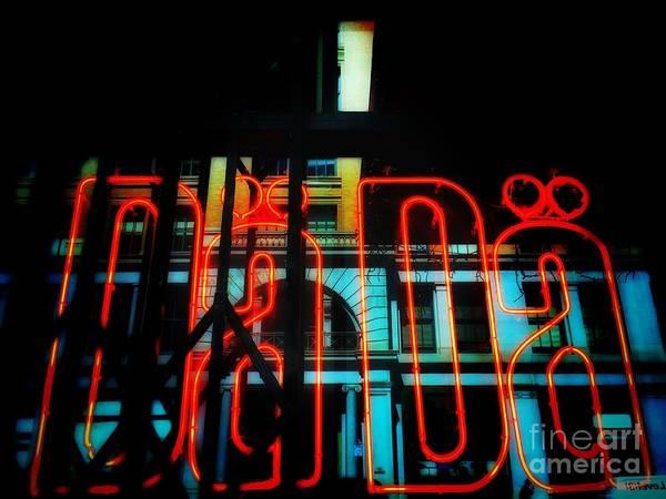 Photograph - Dada by Jenny Revitz Soper