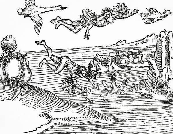 Flying Drawing - Daedalus And Icarus by German School