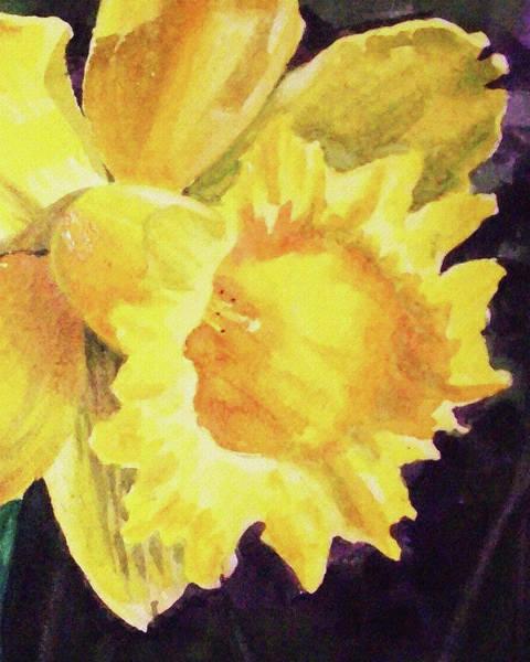 Wall Art - Painting - Daffodil Close Up  by Irina Sztukowski