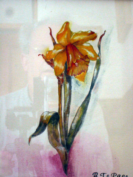 Painting - Daffodil by Richard Le Page