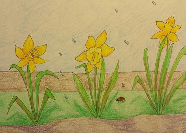 Lady Bug Drawing - Daffodil Spring by Clara Brayton
