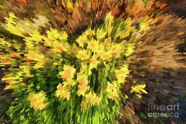 Digital Art - Daffofil Abstract - V2 by Les Palenik