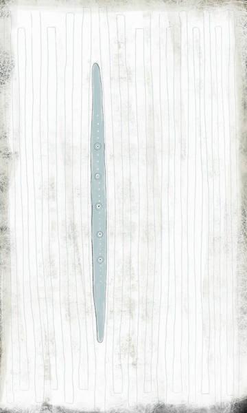 Oval Digital Art - Daggar 2 by Kathryn Humphrey