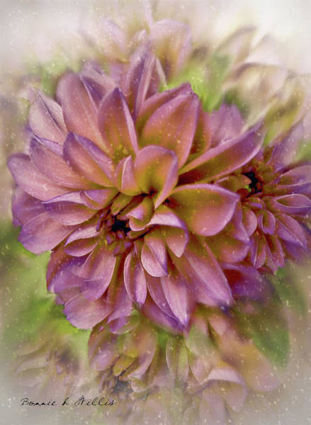 Mixed Media - Dahlia by Bonnie Willis