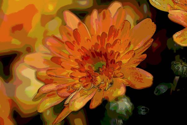 Wall Art - Photograph - Dahlia Orange Abstract by Paul Gavin