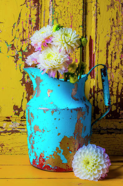 Wall Art - Photograph - Dahlias In Old Blue Pitcher by Garry Gay