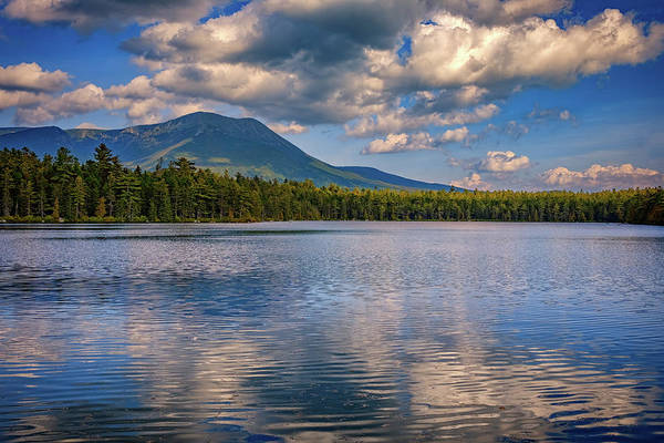 Wall Art - Photograph - Daicey Pond by Rick Berk