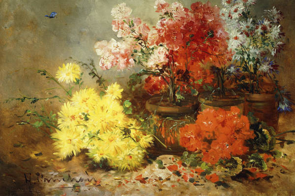 Pink Daisy Painting - Daisies, Begonia, And Other Flowers In Pots by Eugene Henri Cauchois