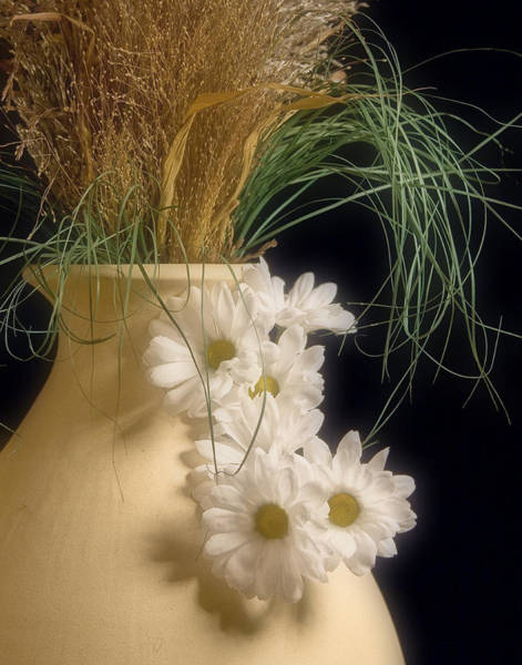 Floral Arrangement Photograph - Daisies On The Side by Tom Mc Nemar