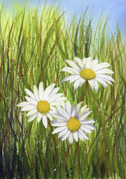 Painting - Daisies Watercolor by Zapista Zapista