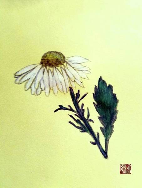 Painting - Daisy Daisy by Margaret Welsh Willowsilk