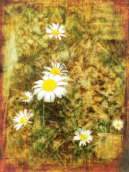 Mixed Media - Daisy Glow by Bellesouth Studio