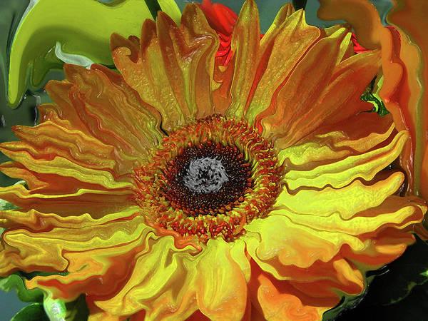 Liquify Photograph - Daisy Glow by Kathy Moll