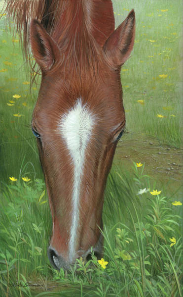 Painting - Daisy Jane by Mike Brown