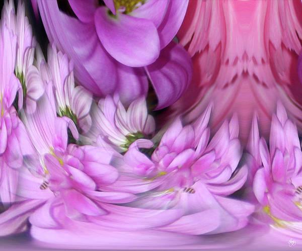Photograph - Daisy Rain by Wayne King