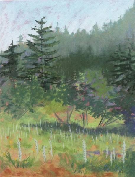 Painting - Dale Creek Meadow by Janet Biondi