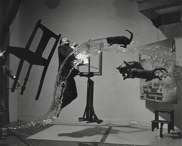 Salvador Photograph - Dali  Atomicus By Philippe Halsman by Everett