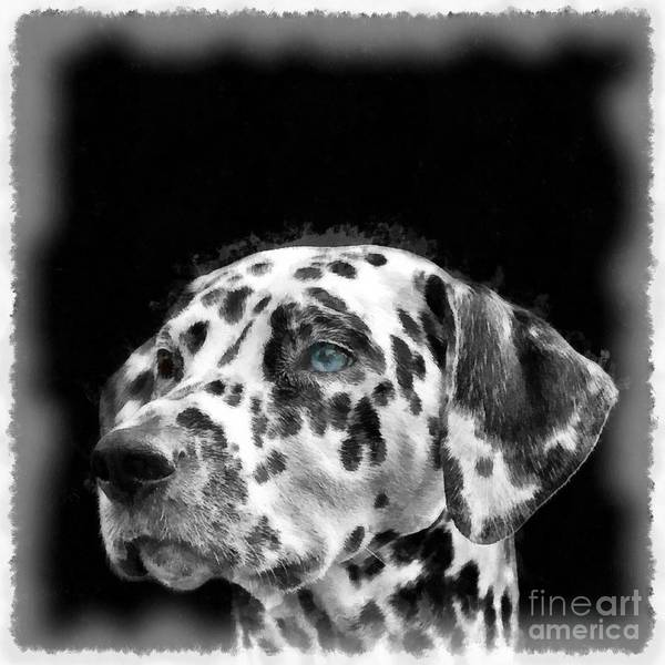 Wall Art - Digital Art - Dalmatian Dog Watercolor by Edward Fielding