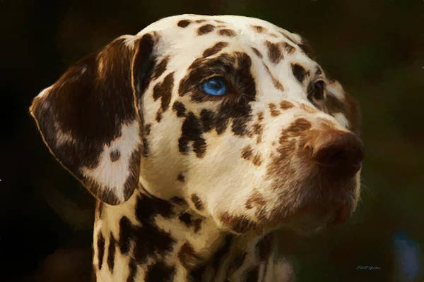 Painting - Dalmatian - Painting by Ericamaxine Price