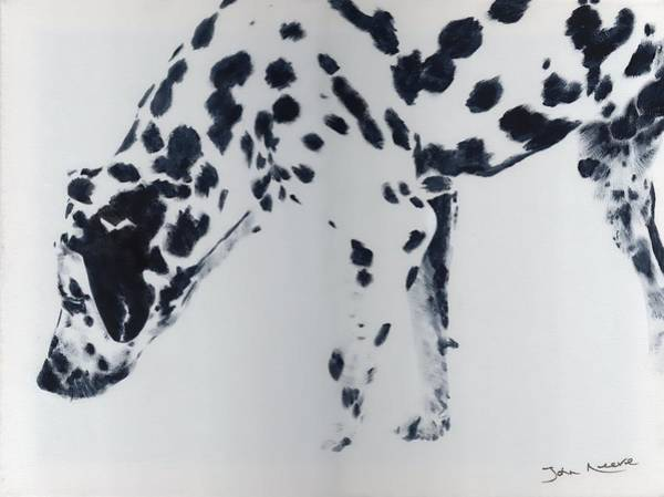 Painting - Dalmation by John Neeve
