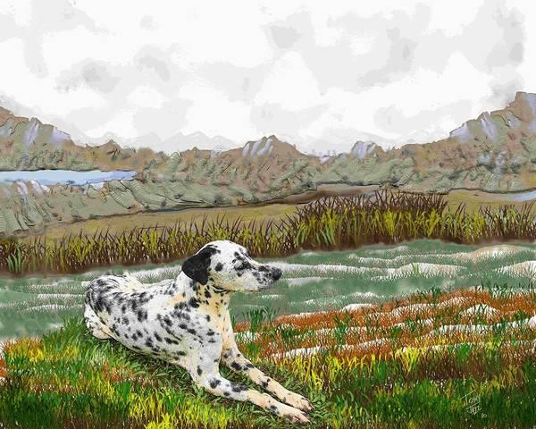 Digital Art - Dalmation Landscape by Tony Rodriguez