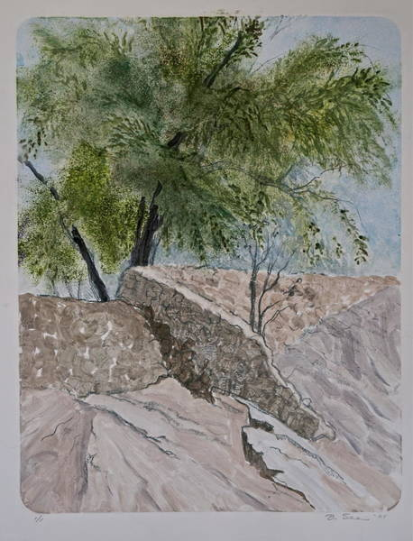 Monotype Mixed Media - Dam At Sabino Canyon by Bonnie See