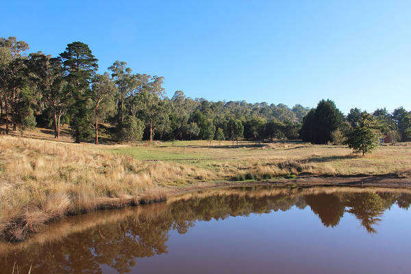 Photograph - Dam In Yarra Glen 29-03-2015 by Bert Ernie