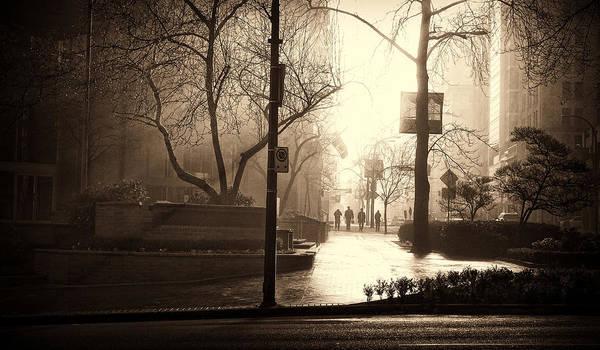Photograph - Damp Dawn by Cameron Wood