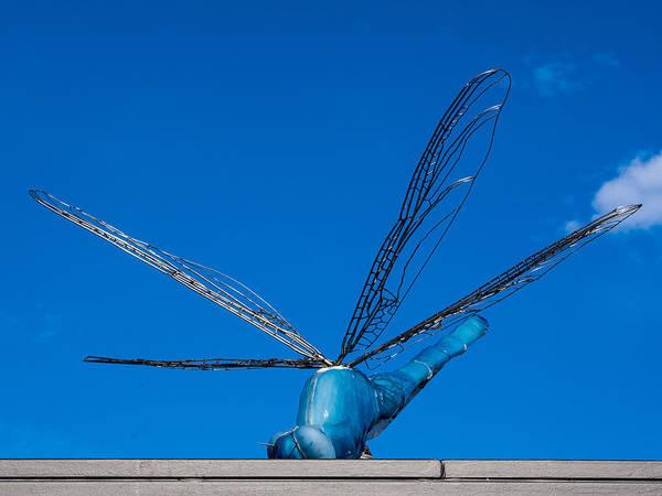 Photograph - Damselfly Sculpture by Steven Ralser