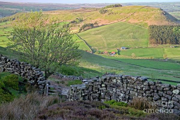Photograph - Danby Dale Countryside by Martyn Arnold