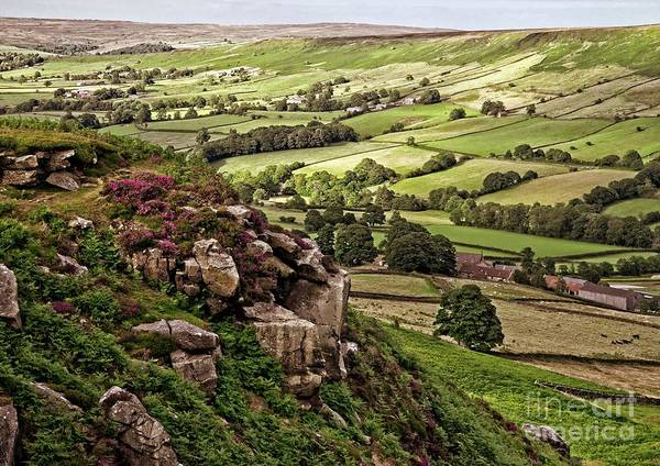 Photograph - Danby Dale Yorkshire Landscape by Martyn Arnold