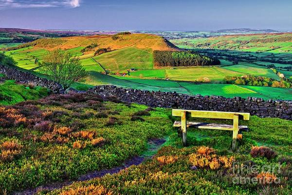 Photograph - Danby Dale Yorkshire by Martyn Arnold