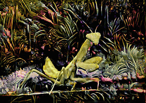 Mixed Media - Dance Of The Mantis by Susan Maxwell Schmidt