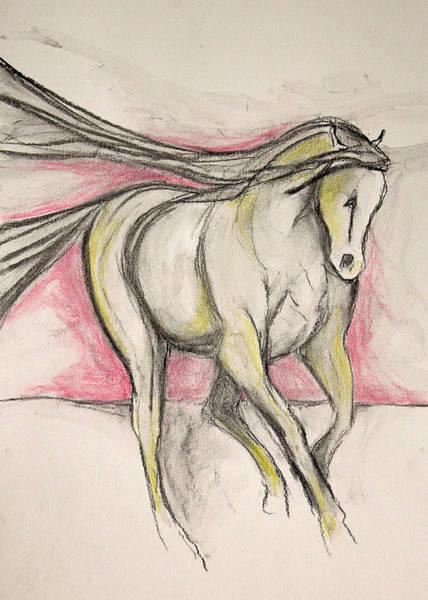 Warmbloods Drawing - Dance On The Horizon by Jennifer Fosgate