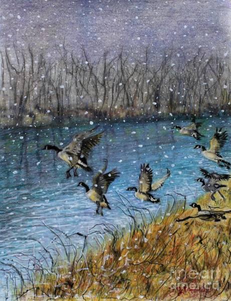 White Goose Drawing - Dance Over Swan Lake by Thomas J Nixon