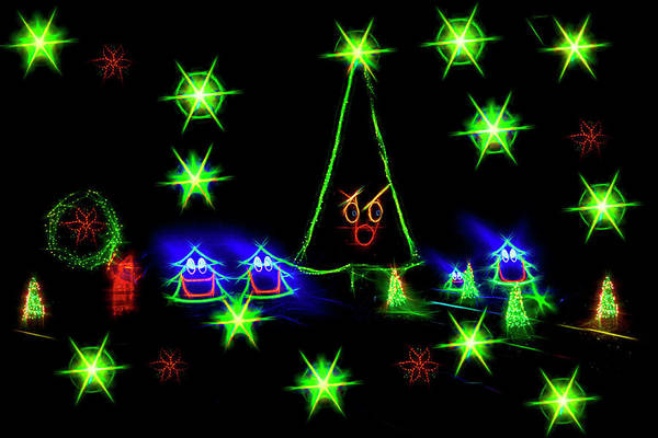 Photograph - Dancing Christmas Trees by Kay Brewer