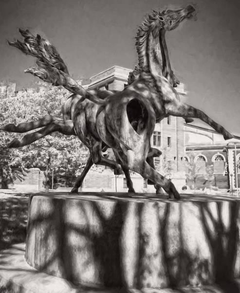 Photograph - Dancing Horses Noir by Alice Gipson
