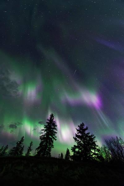 Photograph - Dancing Lights by Dan Jurak